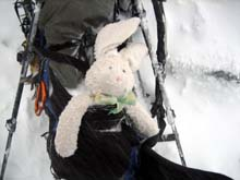 Carrot and Russ, Mount Rainier - September 2007